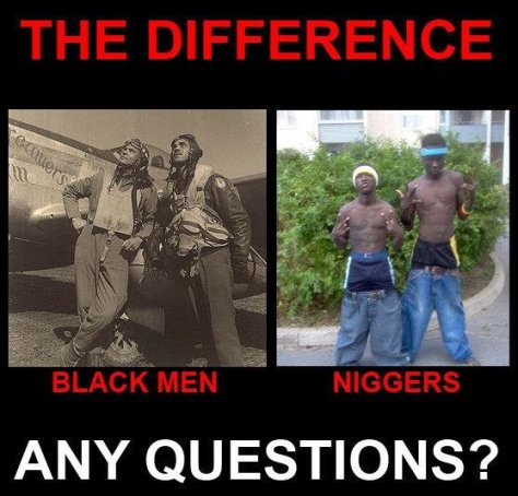 Difference between 'black' men & niggers