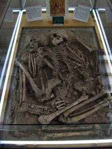 Grimaldi Man fossils in museum in Monaco