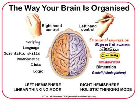 neuro_right_left_brain