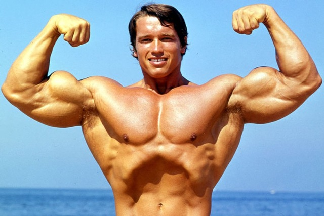 diy-frame-arnold-schwarzenegger-terminator-great-muscle-poster-bodybuilding-gym-decor_640x640
